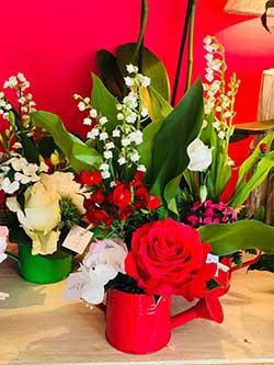 Toute l'actualité de La Grange aux Fleurs !
